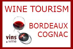 Wine Tourism Bordeaux Cognac