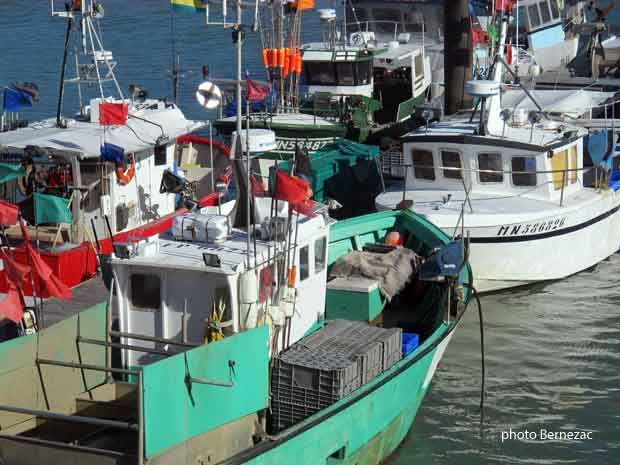 bateau de peche royan